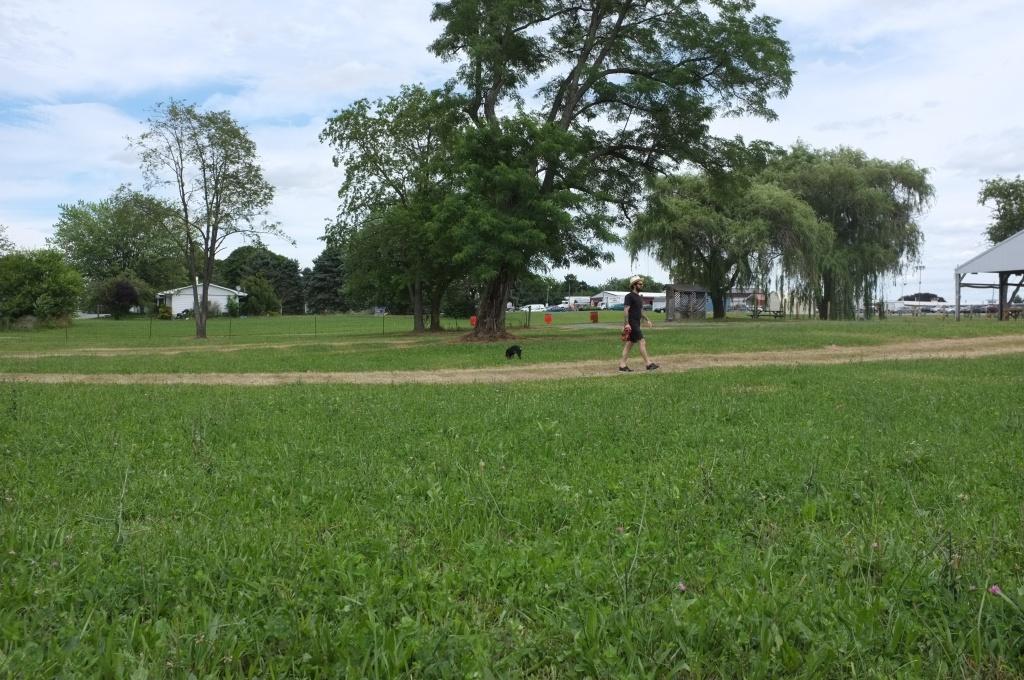 Open fields of PA